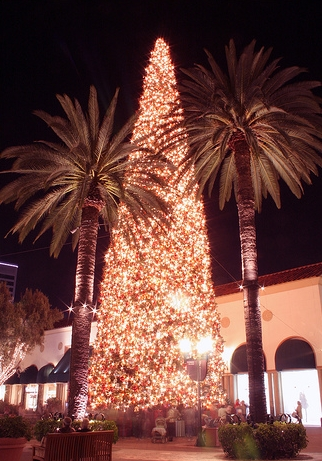 Fashion Island Christmas